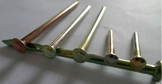 Common Round Nails