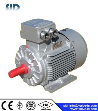 D1TP Series Frequency Conversion Motor