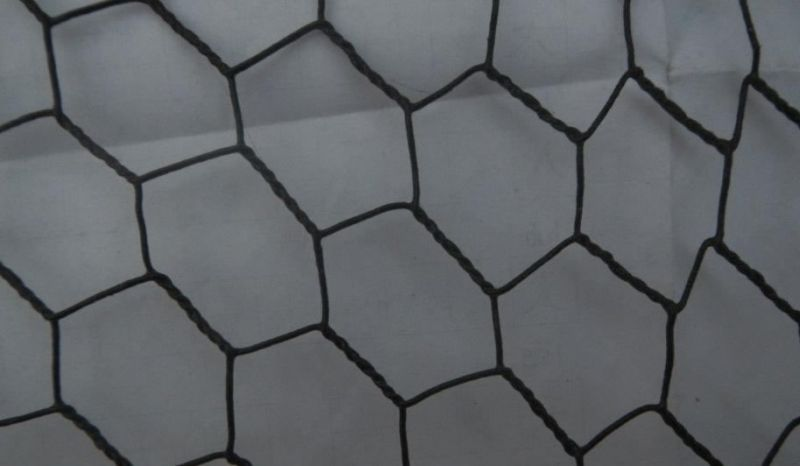 Galvanized Black Vinyl Coating Chicken Wire