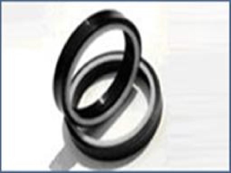 Wiper Scraper Seal, Support Ring and Wearing Ring