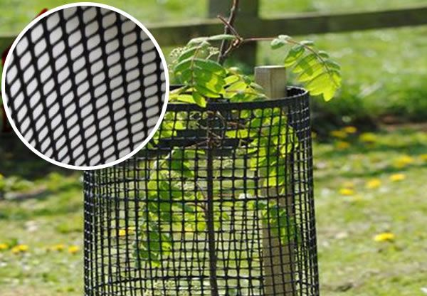 Tree Guard fencing Plastic Mesh: Tubes, Rolls and Cut Pieces